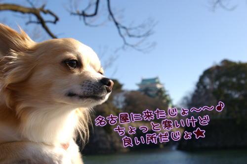 10-02 名古屋参上 7