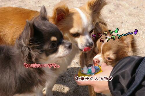 10-02 雑賀崎 3