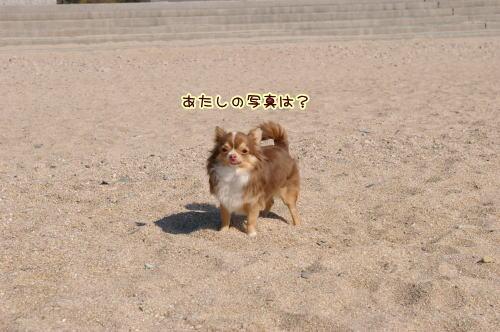 10-02 雑賀崎 8