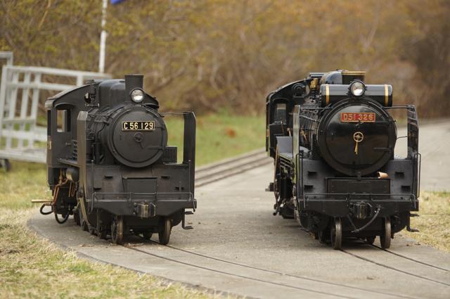 C56 と D51