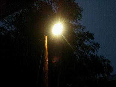 裸電球の街灯・自作電流(丸太)に笠松電機製251と91をつけ、竹林の前におったてて光らせたところ