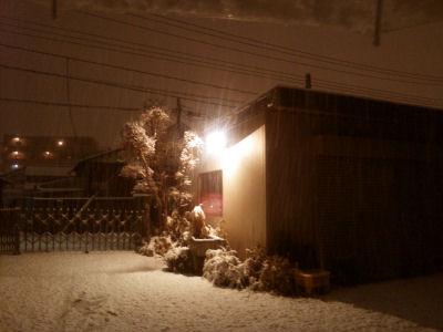 マウント・笠電と舞う雪
