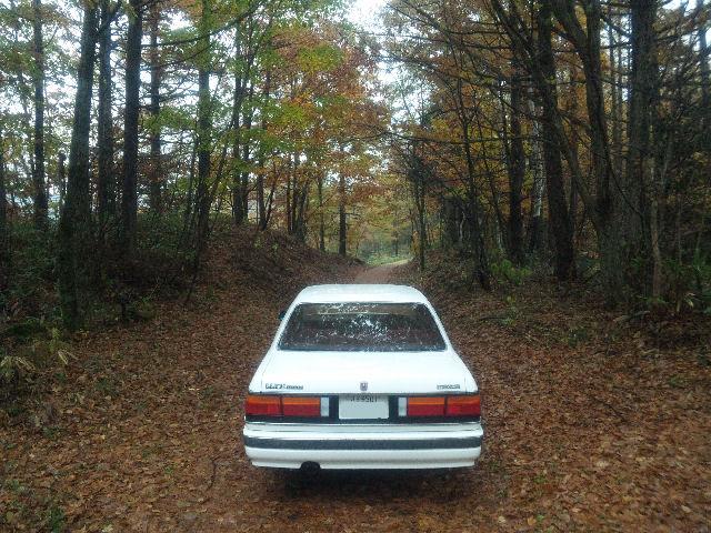 HCルーチェと紅葉の小道