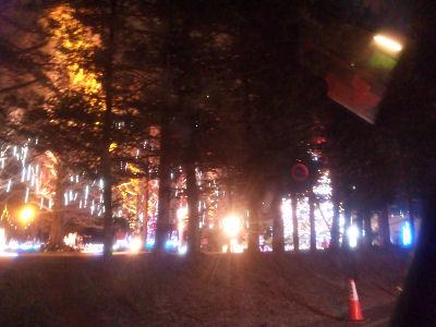 矢ヶ崎公園のイルミネーション