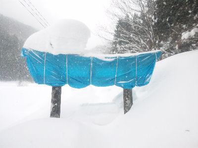 雪に埋もれた鳥居