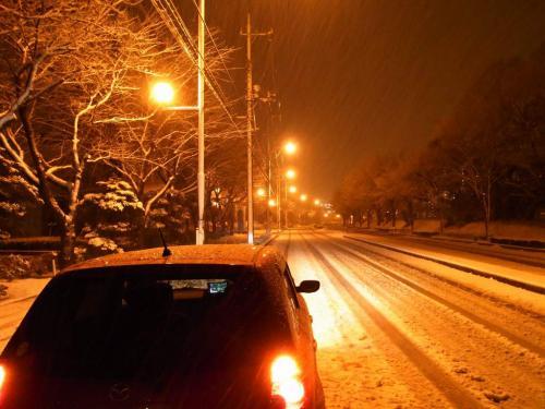 R0012484雪とベリーサ2