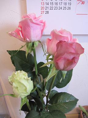 綺麗なバラ達♪