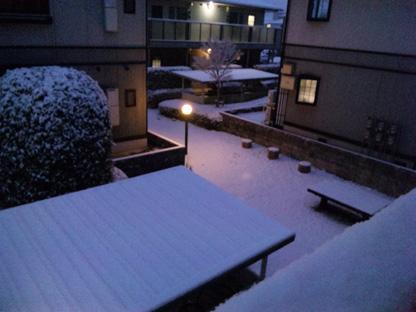 雪やこんこs