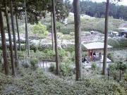 三室戸寺②