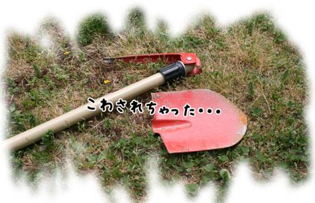 2_20110504163636.jpg