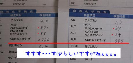 3_20110407165545.jpg