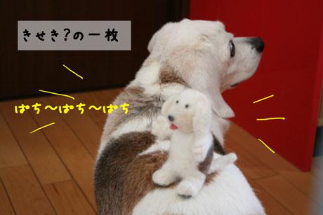 3_20110427151010.jpg