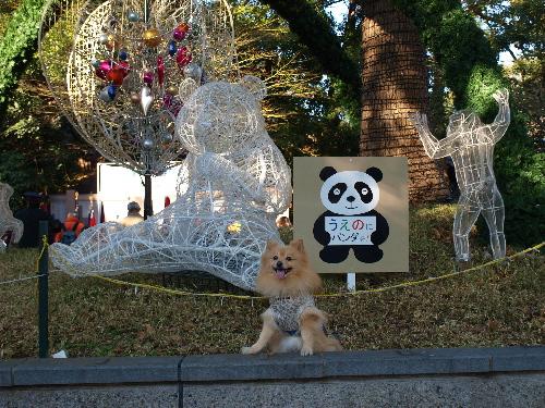 パンダちゃんオブジェの前で