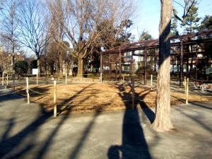 12月23日の中庭