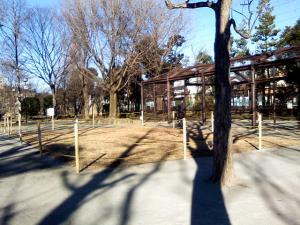 2010年1月1日の中庭