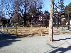 1月6日の中庭