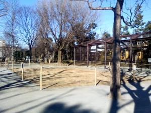 1月9日の中庭