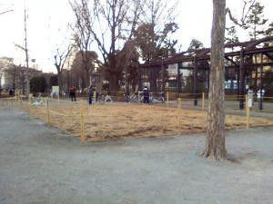 1月16日の中庭