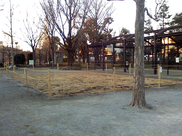 1月17日の中庭