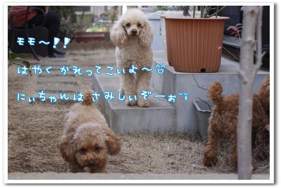C_VMkl1W.jpg
