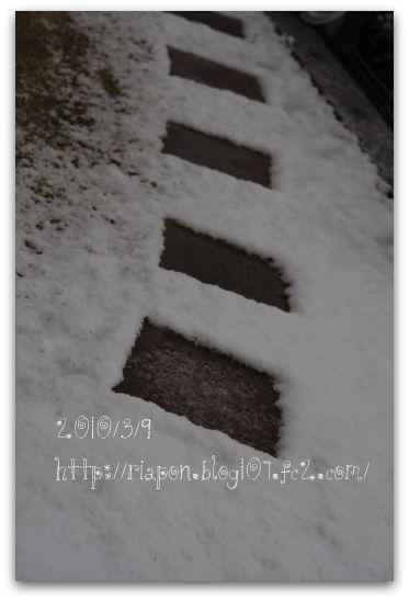 _MG_8673.jpg