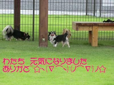 CIMG0233_20110918161003.jpg
