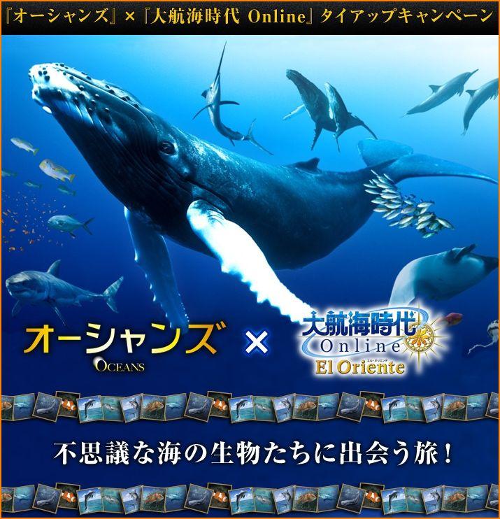 2010-01-21_20-02-17-001.jpg