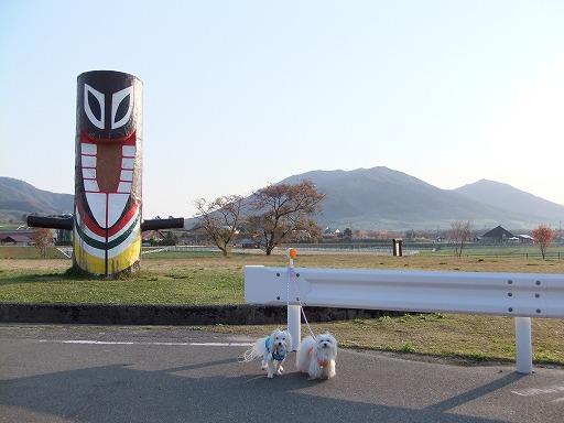 20100502 003