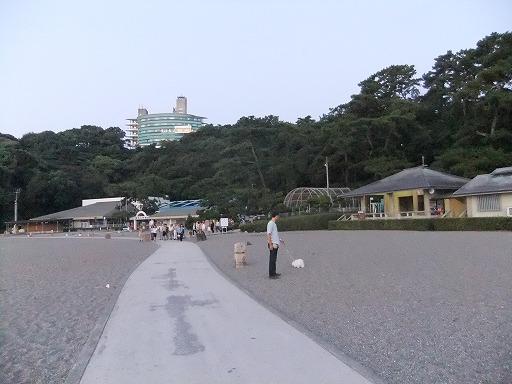 20100920 002
