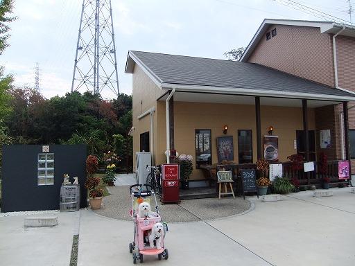 20101107 003