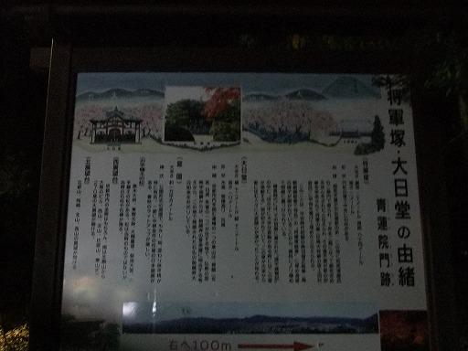 20101127 002