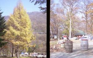 200911031-1.jpg