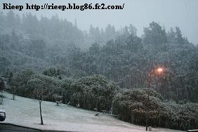SNOW AUG 2011 009
