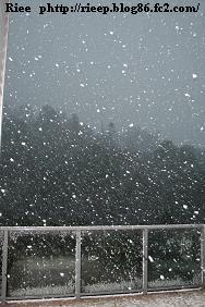 SNOW AUG 2011 006