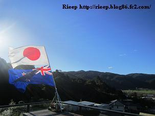 flag 006
