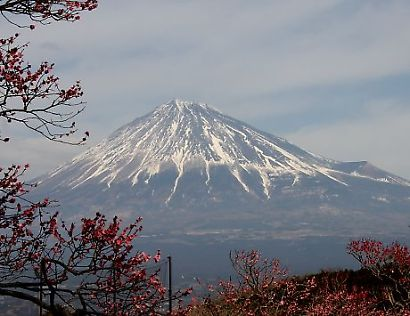 岩本山公園-4
