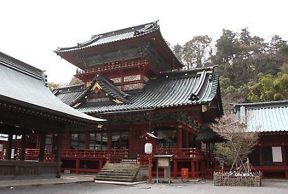 浅間神社の枝垂れ桜-1
