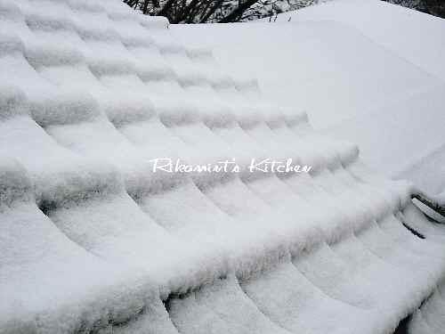 DSCF1・13雪3