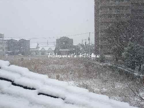 DSCF1・13雪5