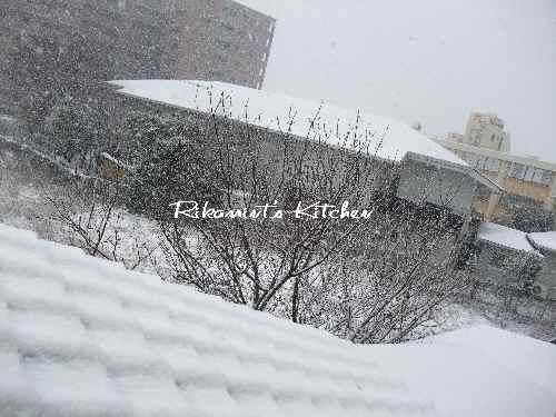 DSCF1・13雪4