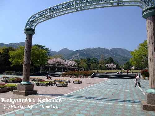 DSCF別府公園1
