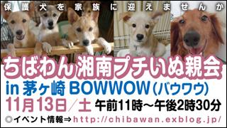 20101113_chigasaki_320x180[1]