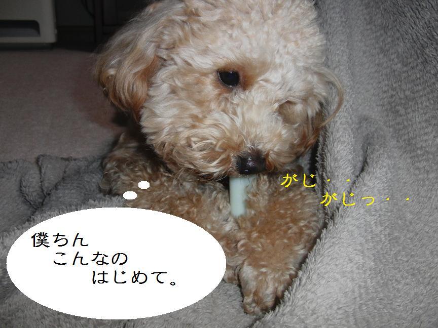 020_20120206123824.jpg
