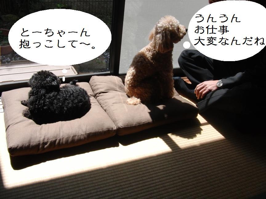 020_20120326144631.jpg