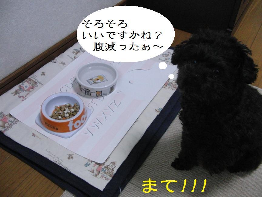 022_20120201141109.jpg