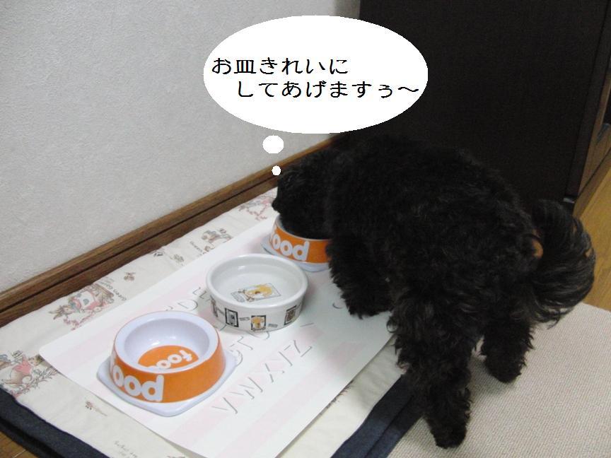 037_20120201141248.jpg