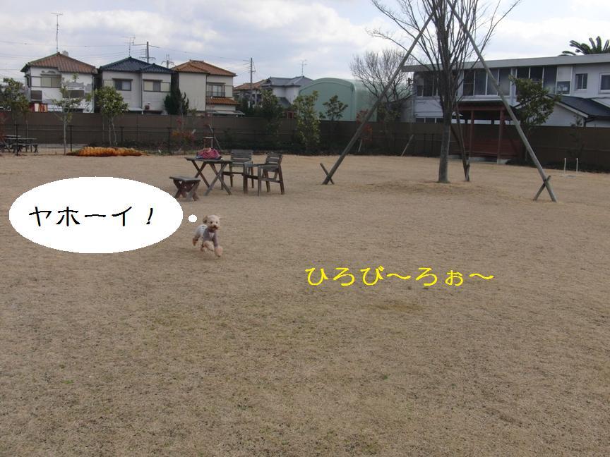 079_20120204192743.jpg