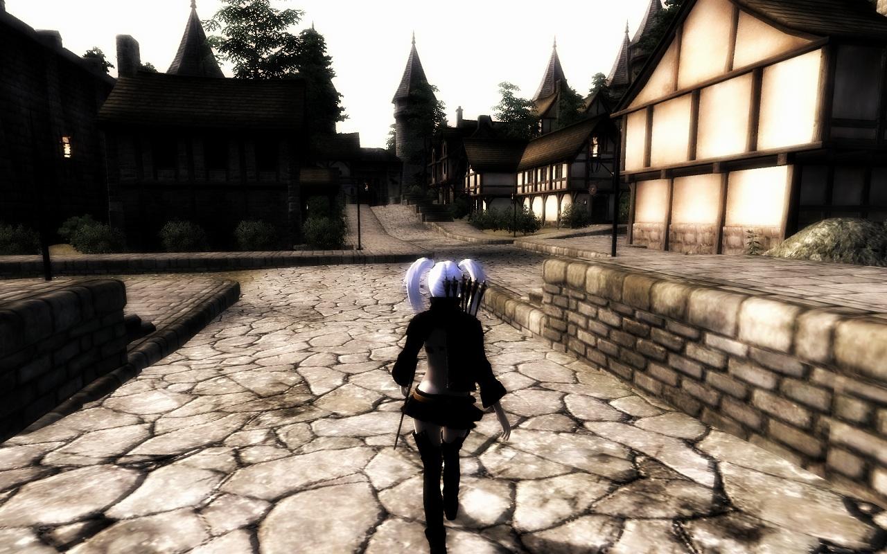 Oblivion 2011-02-01 23-07-48-23
