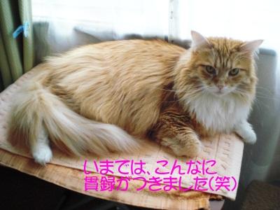 20105111.jpg