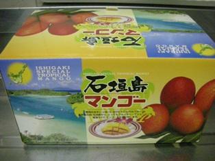 沖縄土産4